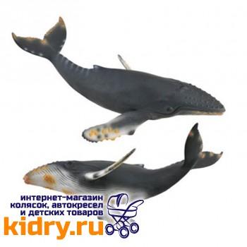 Горбатый кит XL