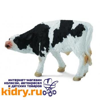 Фризский теленок , S
